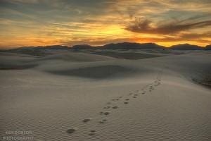 Taking Steps Forward, Destination (Un)Known